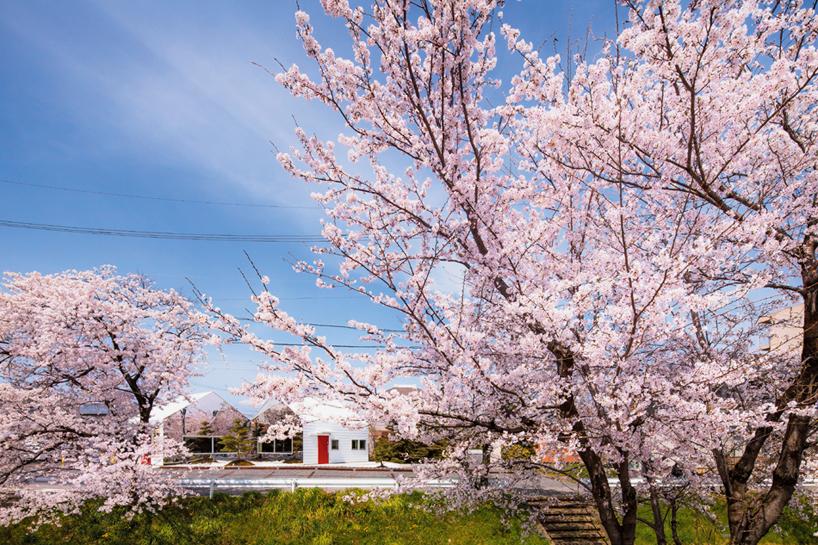 Preciosa cafeteria en Japón con espejos en su fachada para reflejar el paisaje 2