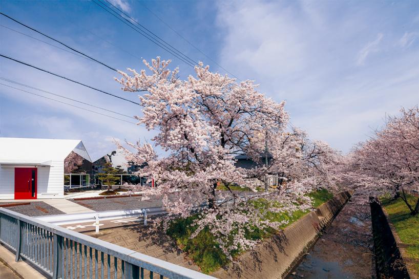 Preciosa cafeteria en Japón con espejos en su fachada para reflejar el paisaje 3