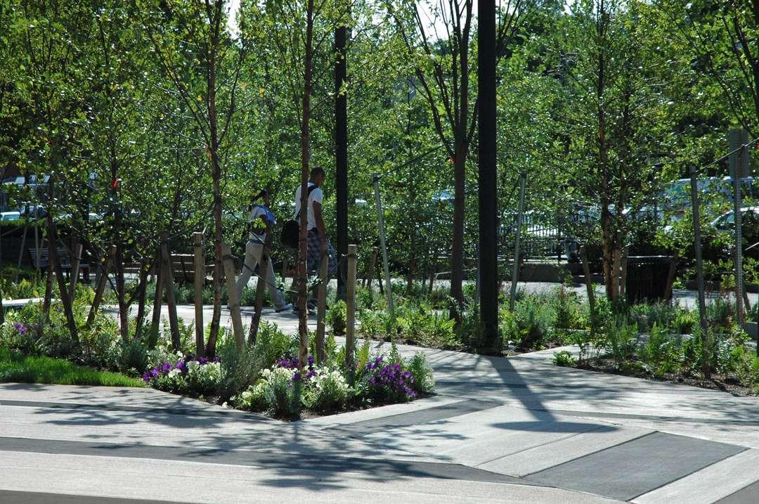 jardines en sitios raros 10