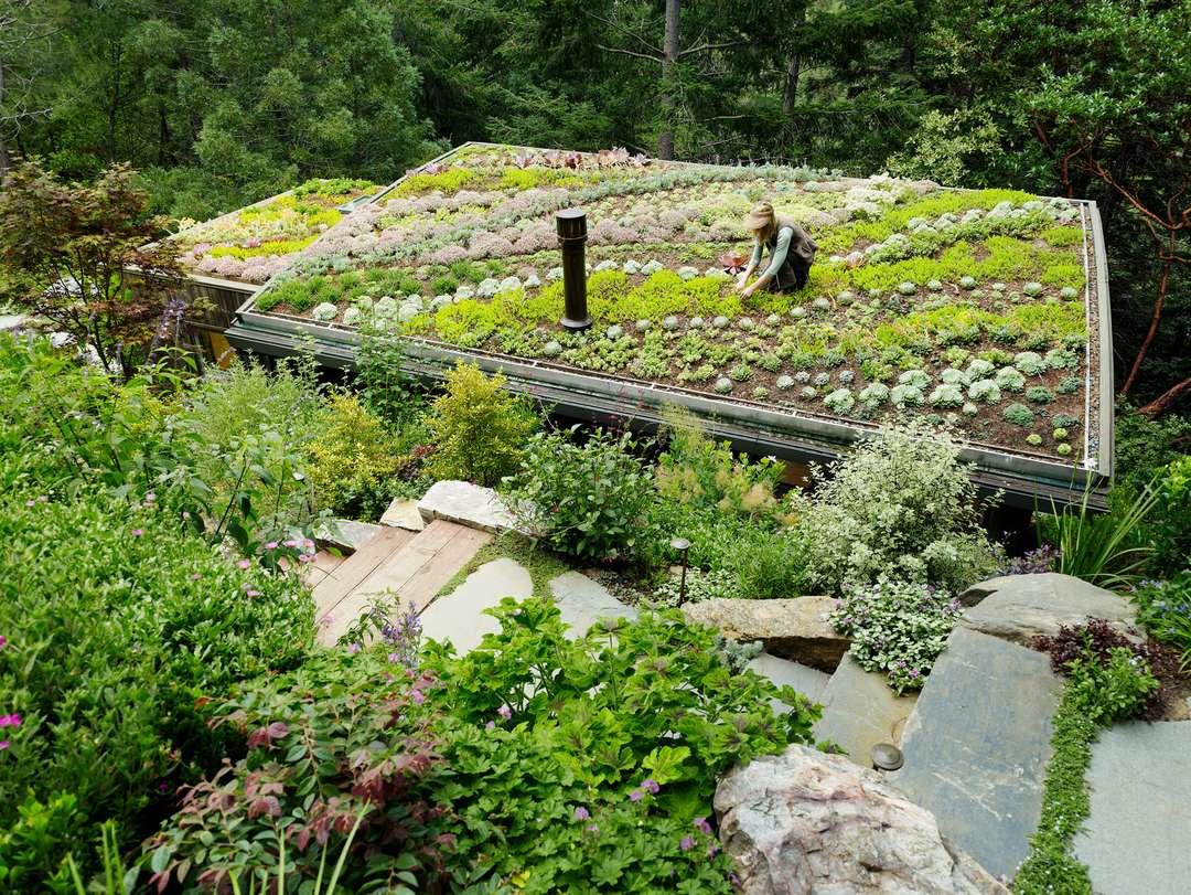 jardines en sitios raros 3
