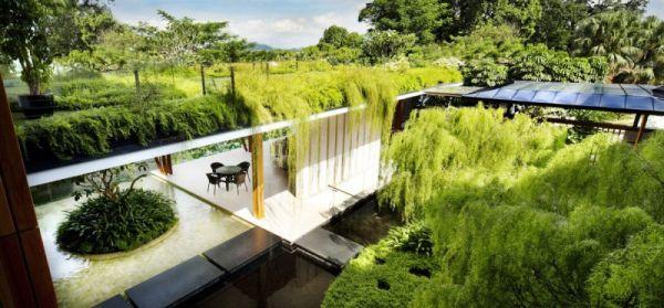 La Casa Willow, una mezcla entre la arquitectura y la naturaleza 4
