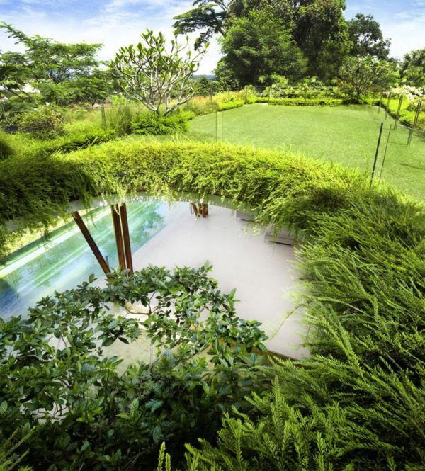La Casa Willow, una mezcla entre la arquitectura y la naturaleza 5