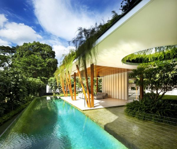 La Casa Willow, una mezcla entre la arquitectura y la naturaleza 8