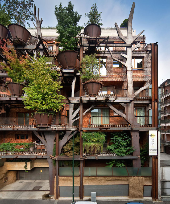 arboles apartamento 3
