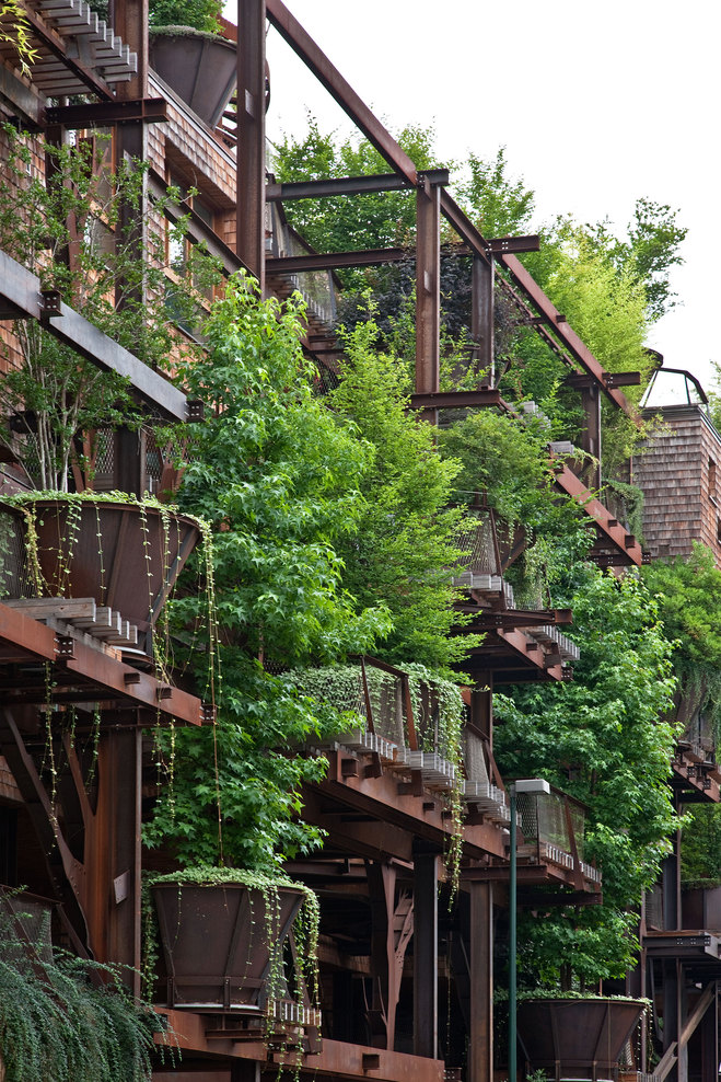 arboles apartamento 4
