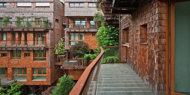 arboles apartamento 6