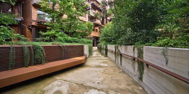 arboles apartamento 7