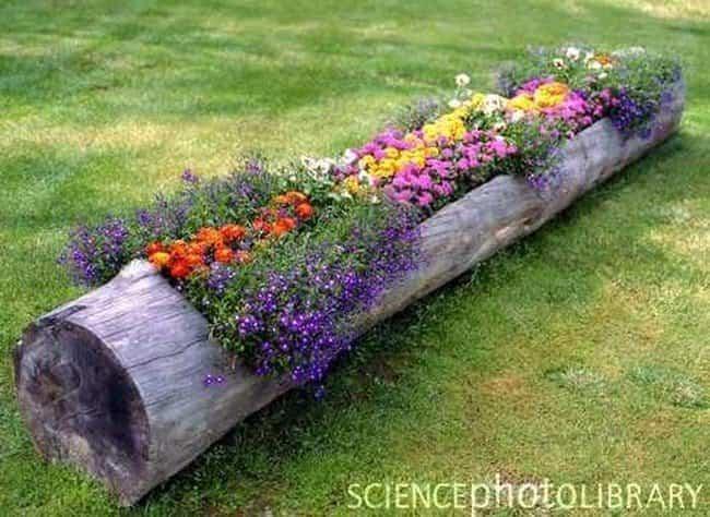 20 ideas para reciclar troncos de rboles y decorar tu for Arboles con flores para jardin