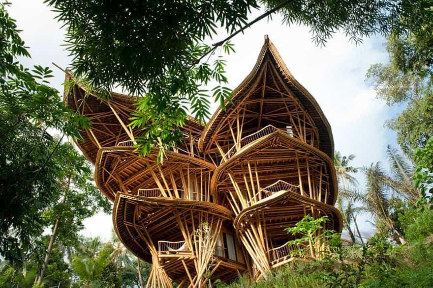 casa bambu 1