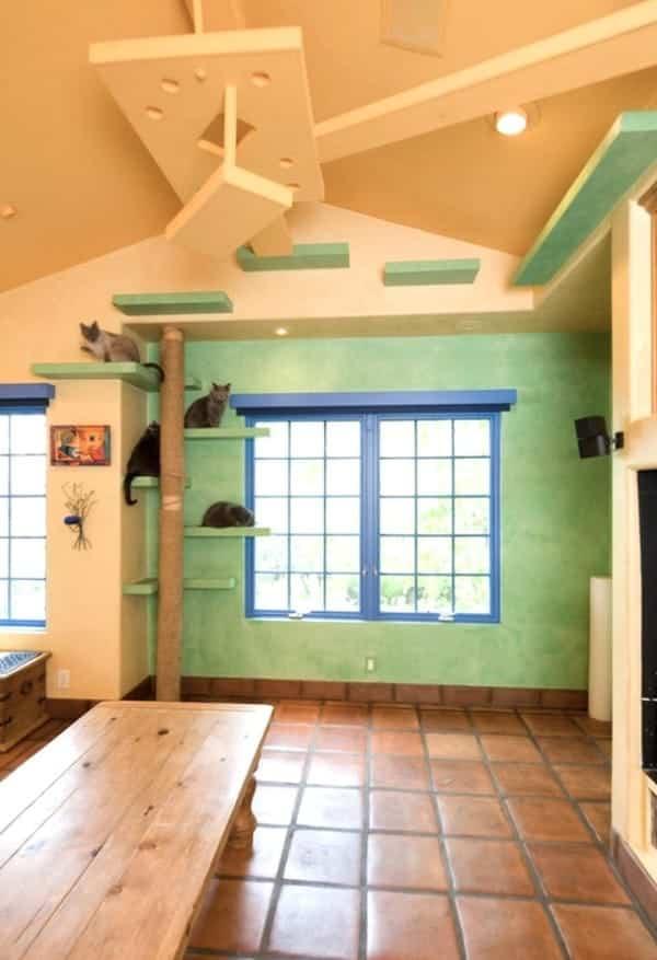 casa reformada para catorce gatos - repisas en las paredes
