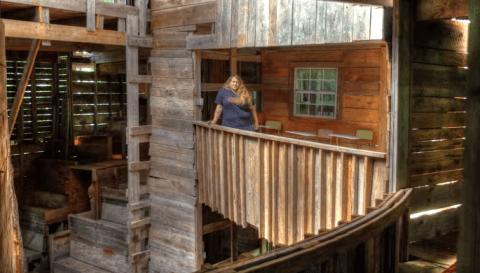 Casa del árbol con capacidad para 80 personas