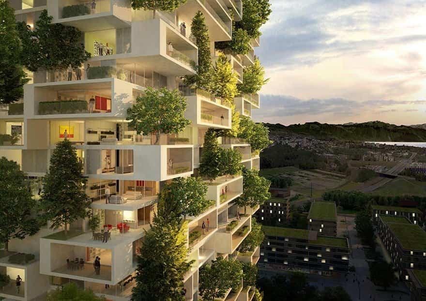 La Tour des Cedres con plantas repartidas por toda su superficie