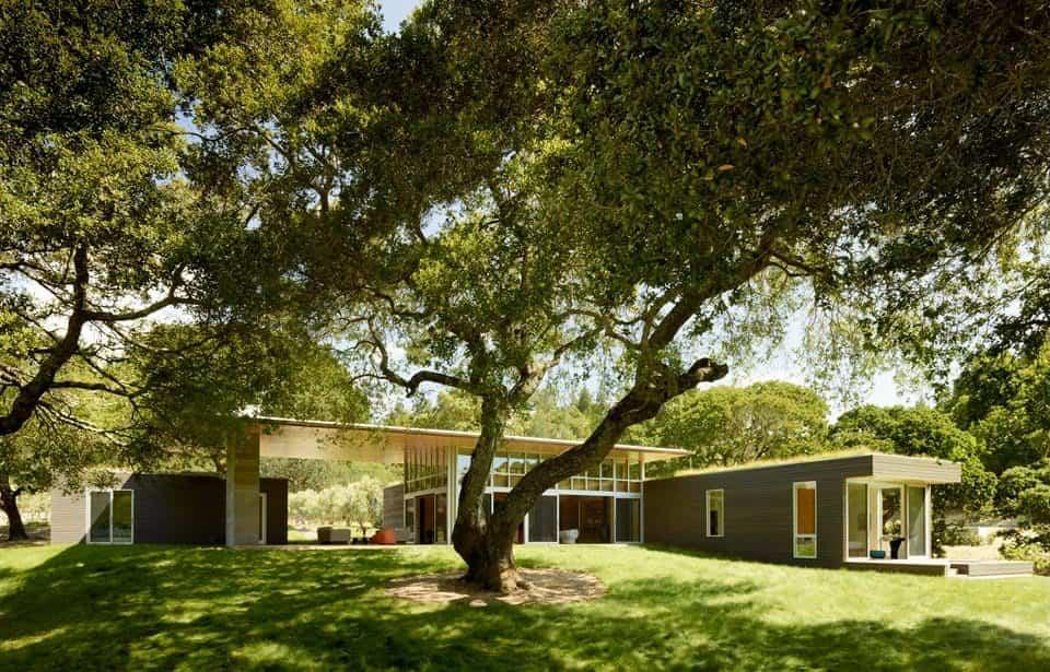 residencia Sonoma construida sobre una leve pendiente