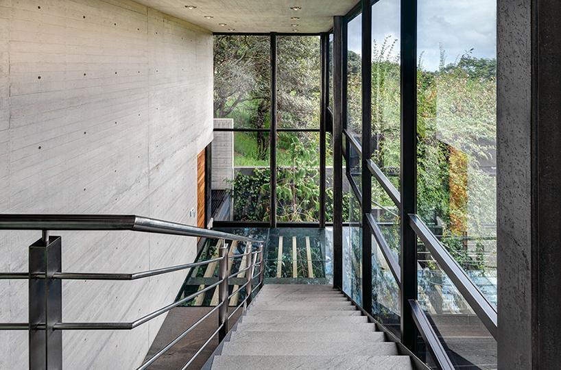 casa bosque en méxico 11