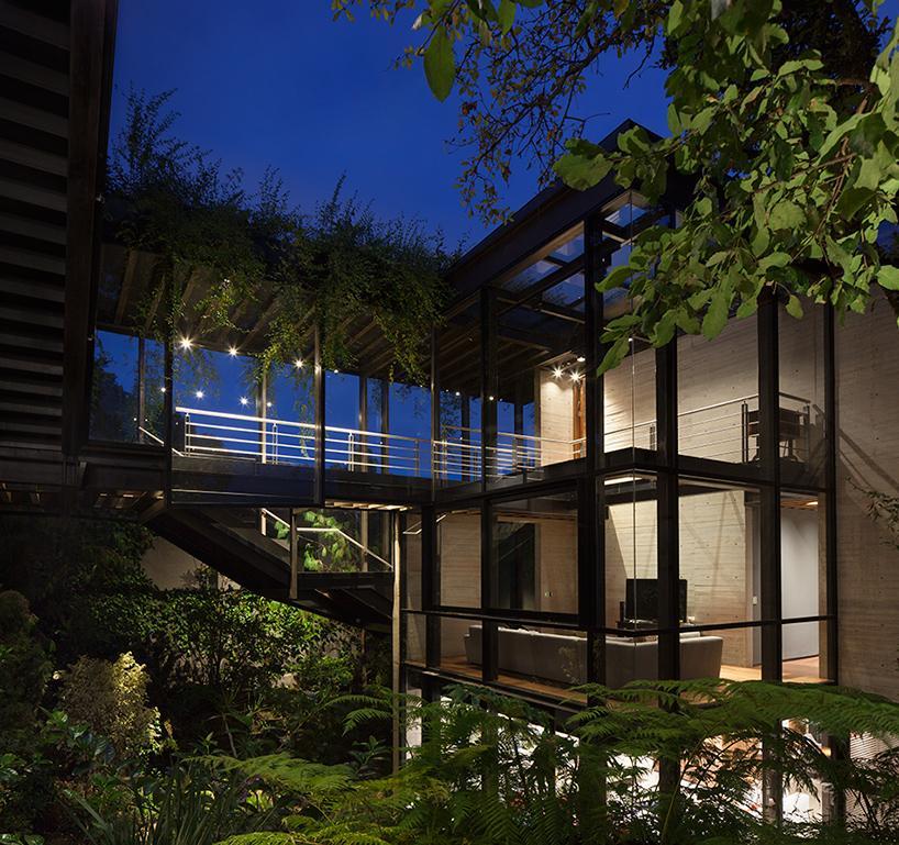 casa bosque en méxico 12
