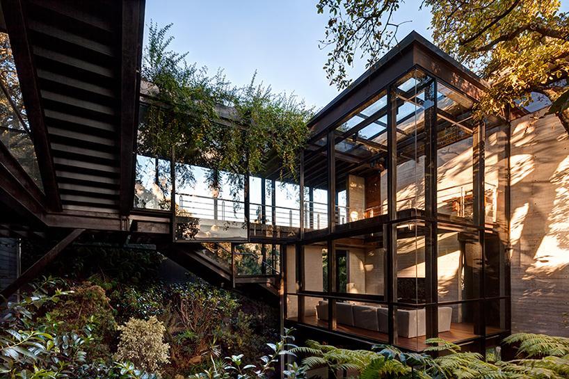 casa bosque en méxico 14