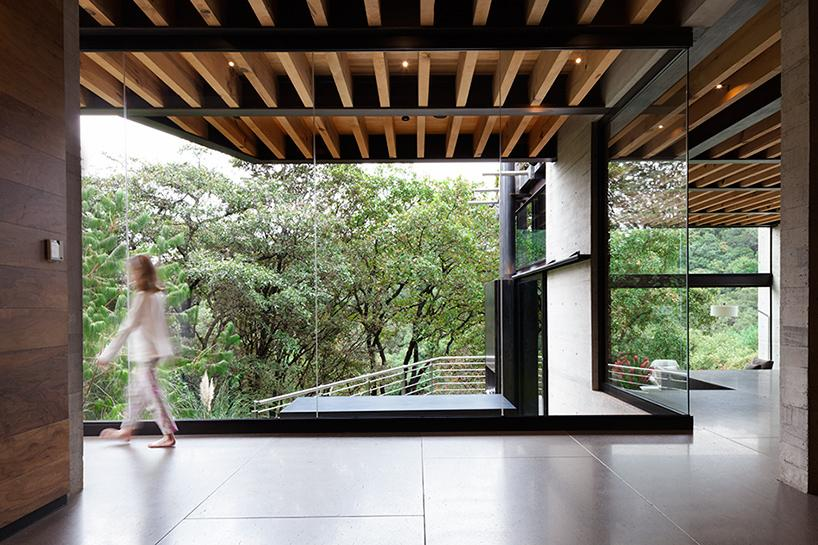 casa bosque en méxico 7