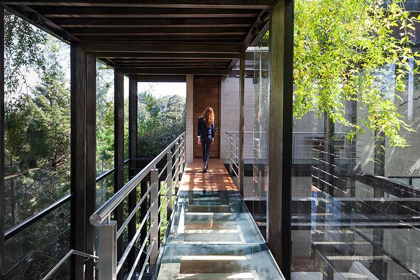 casa bosque en méxico 8