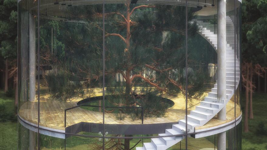 diseño casa circular en un bosque 6