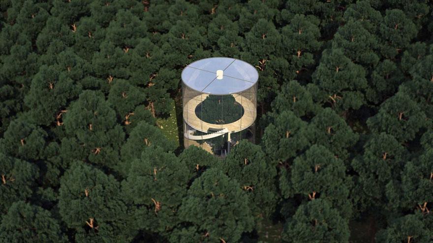 diseño casa circular en un bosque 7