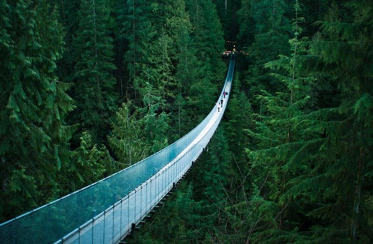 puentes más curiosos del mundo 16 - colgante de vancouver