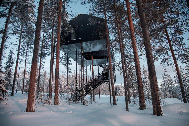 Séptima habitación treehotel en Suecia 1