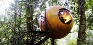 free spirit sphere 1