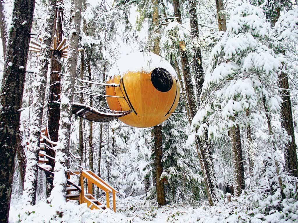 Free Spirit Spheres nevado