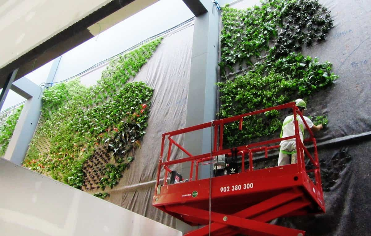 jardin vertical alcorcon 2