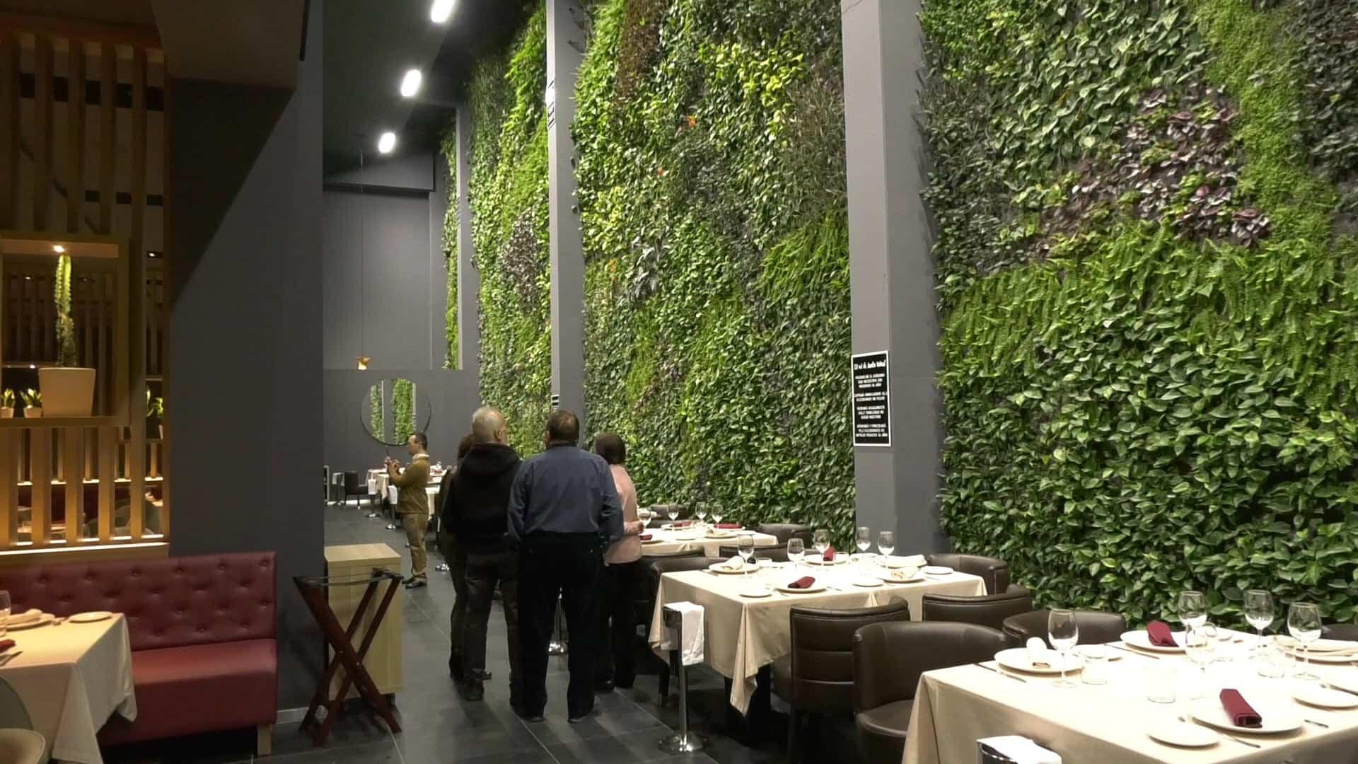 jardin vertical alcorcon