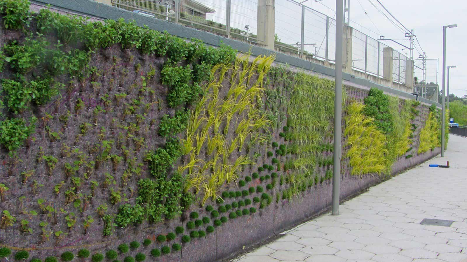 Ignacio Solano crea un nuevo jardín vertical en la localidad vizcaína de Berango