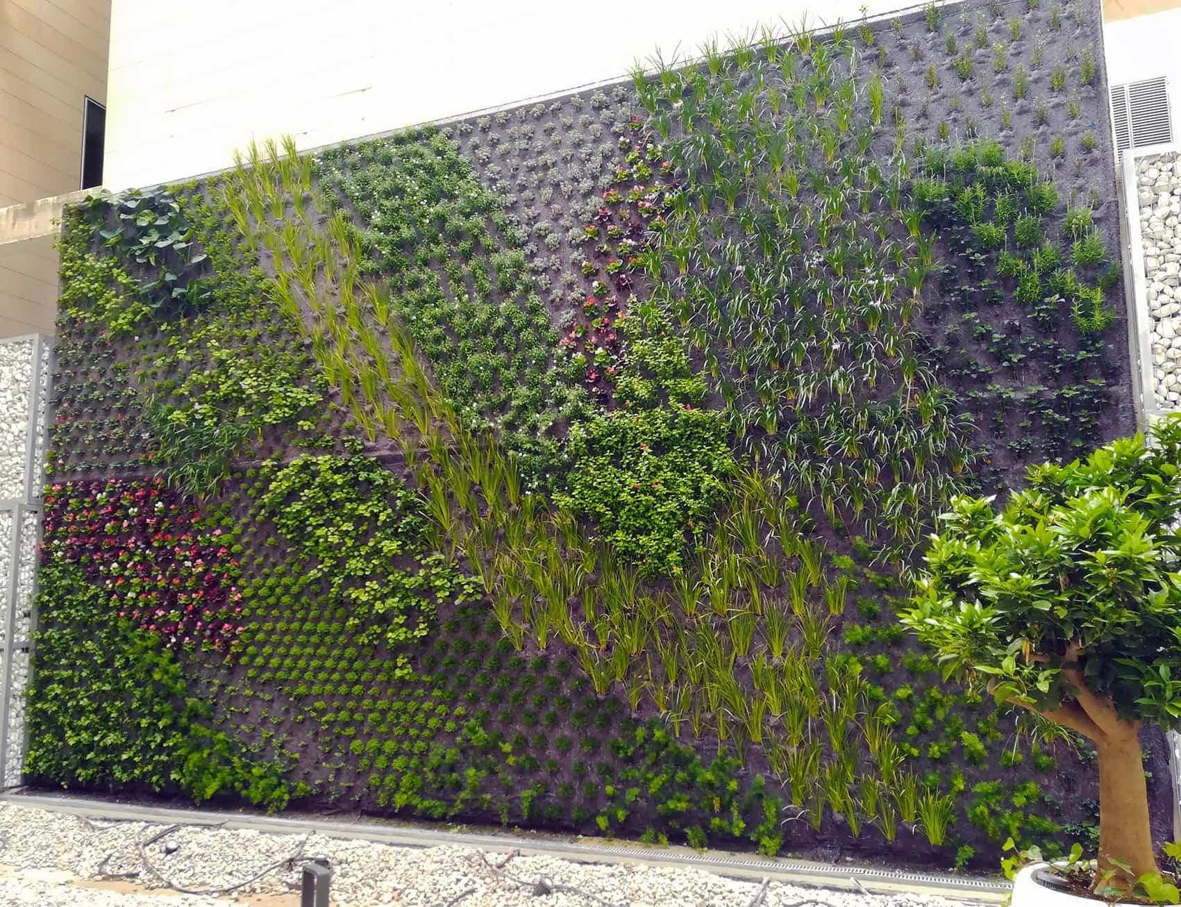 jardinvertical alicante 1